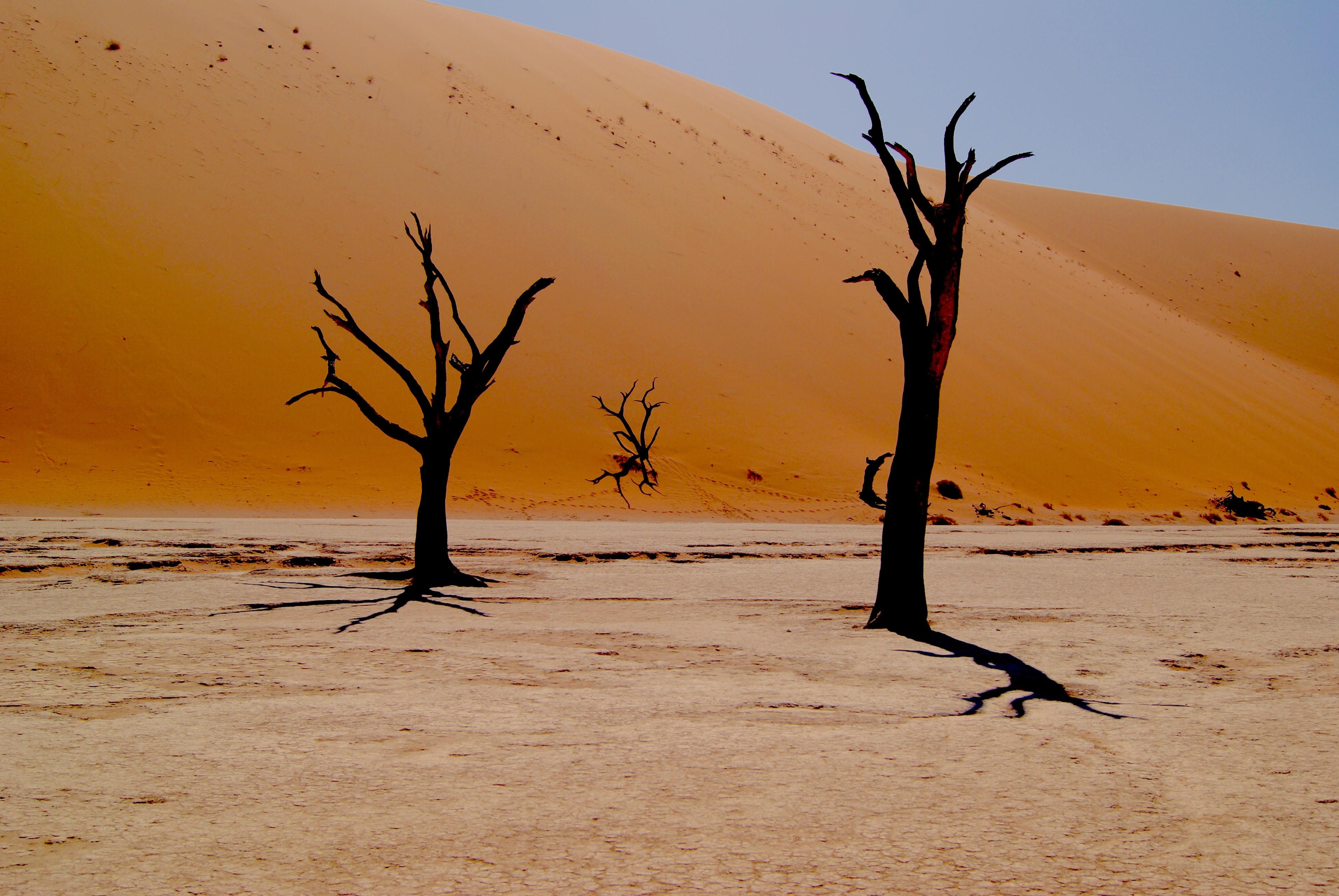 Szinte biztos, hogy az eddigi legmelegebb évtizeden vagyunk túl