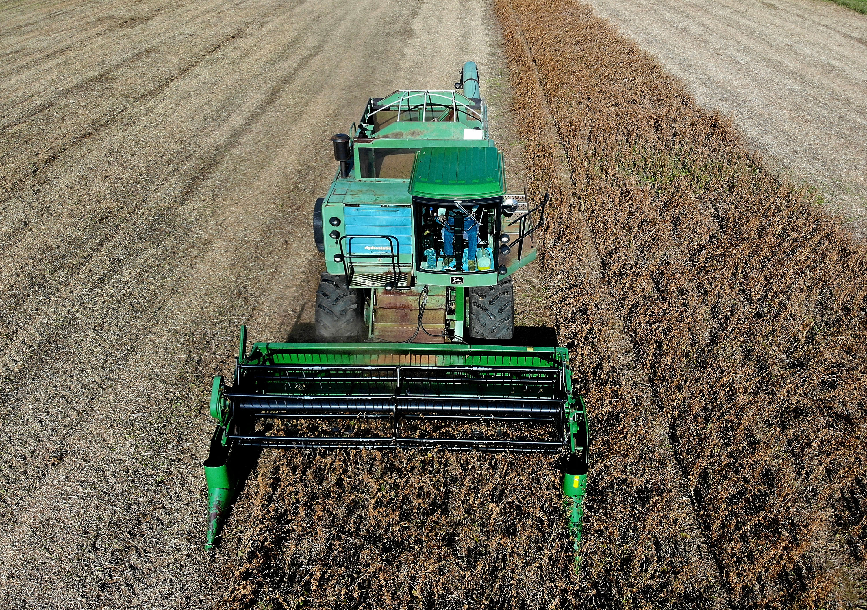 Kína leállította az amerikai agrártermékek importját