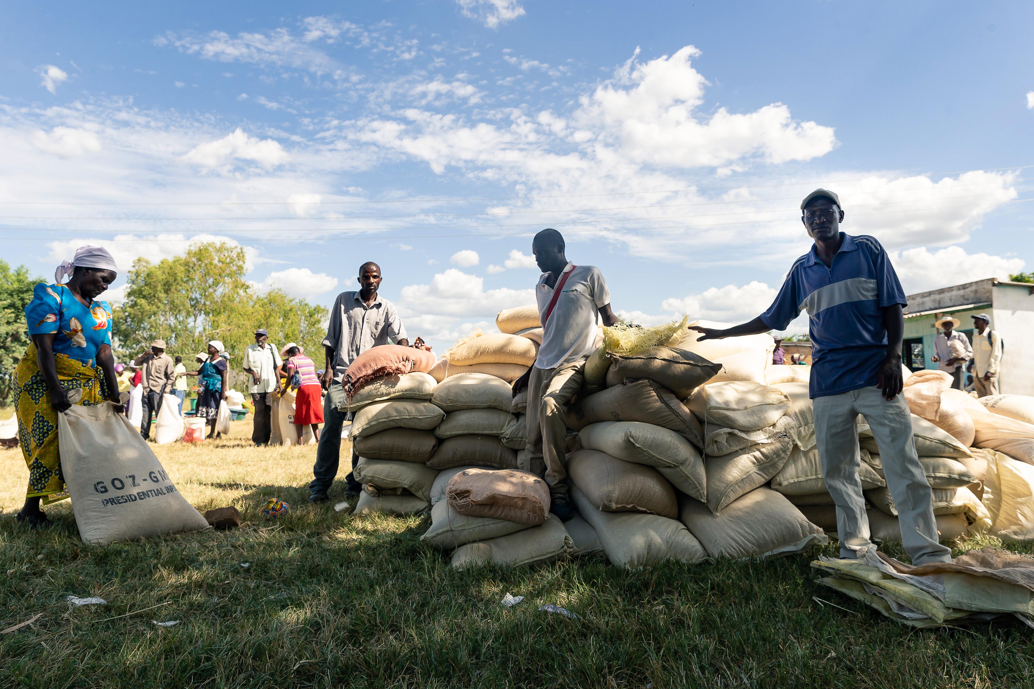 A zimbabweiak harmadát fenyegeti éhínség