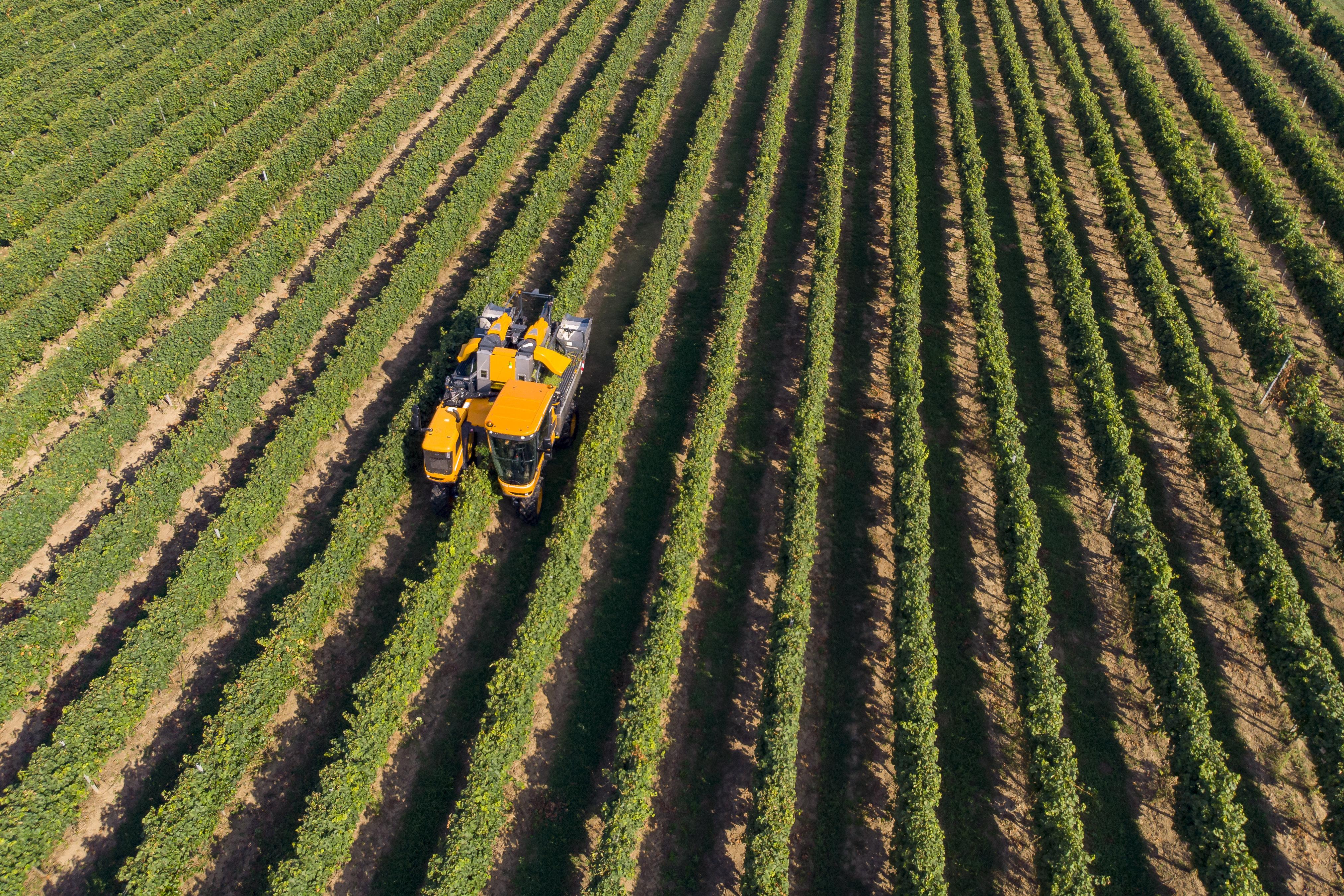 Jót akart az EU az agrártámogatások átalakításával, mégis mindenki utálta a javaslatot