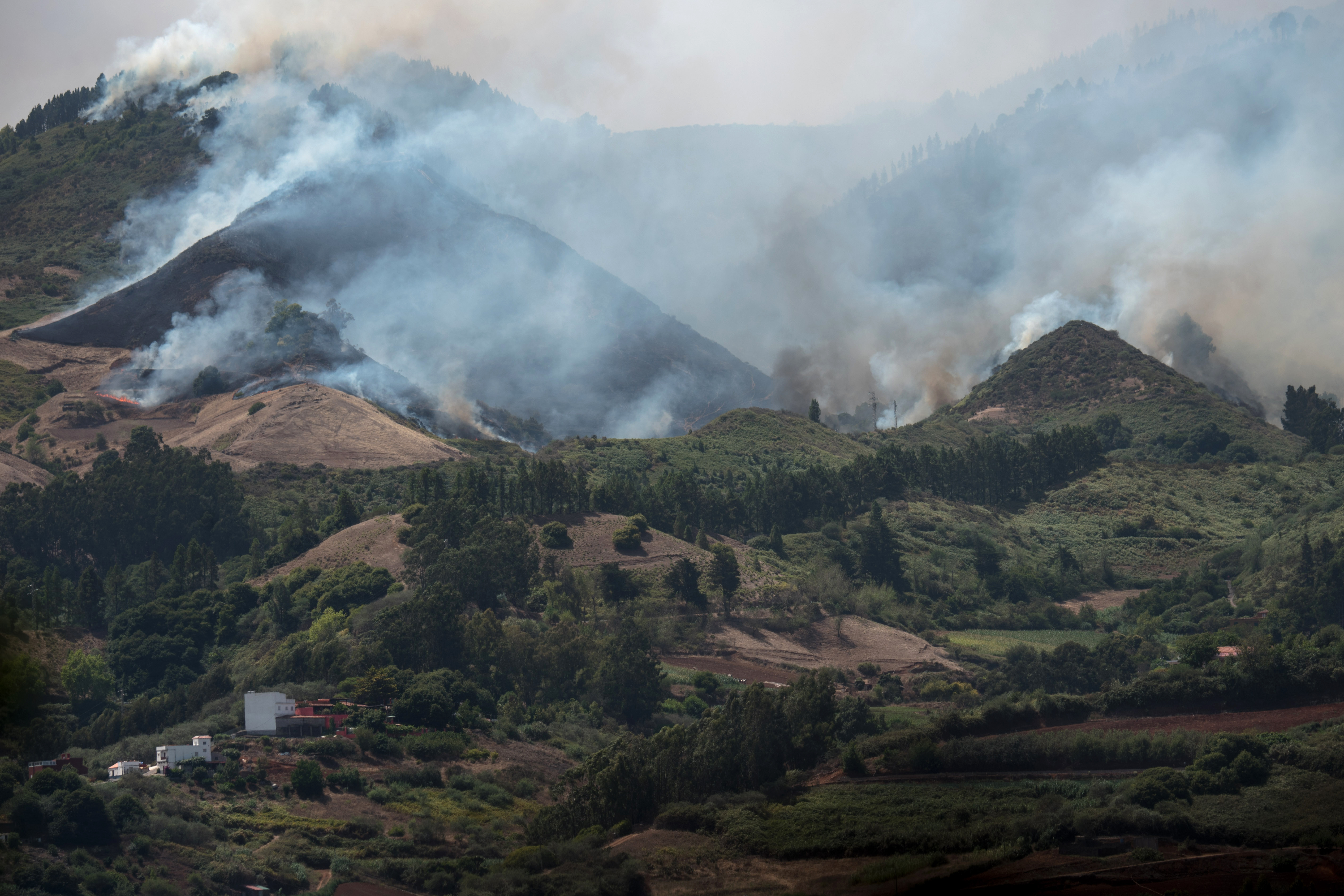 Drámai méretűvé nőtt az erdőtűz a Kanári-szigeteken, 4000 embert kellett evakuálni