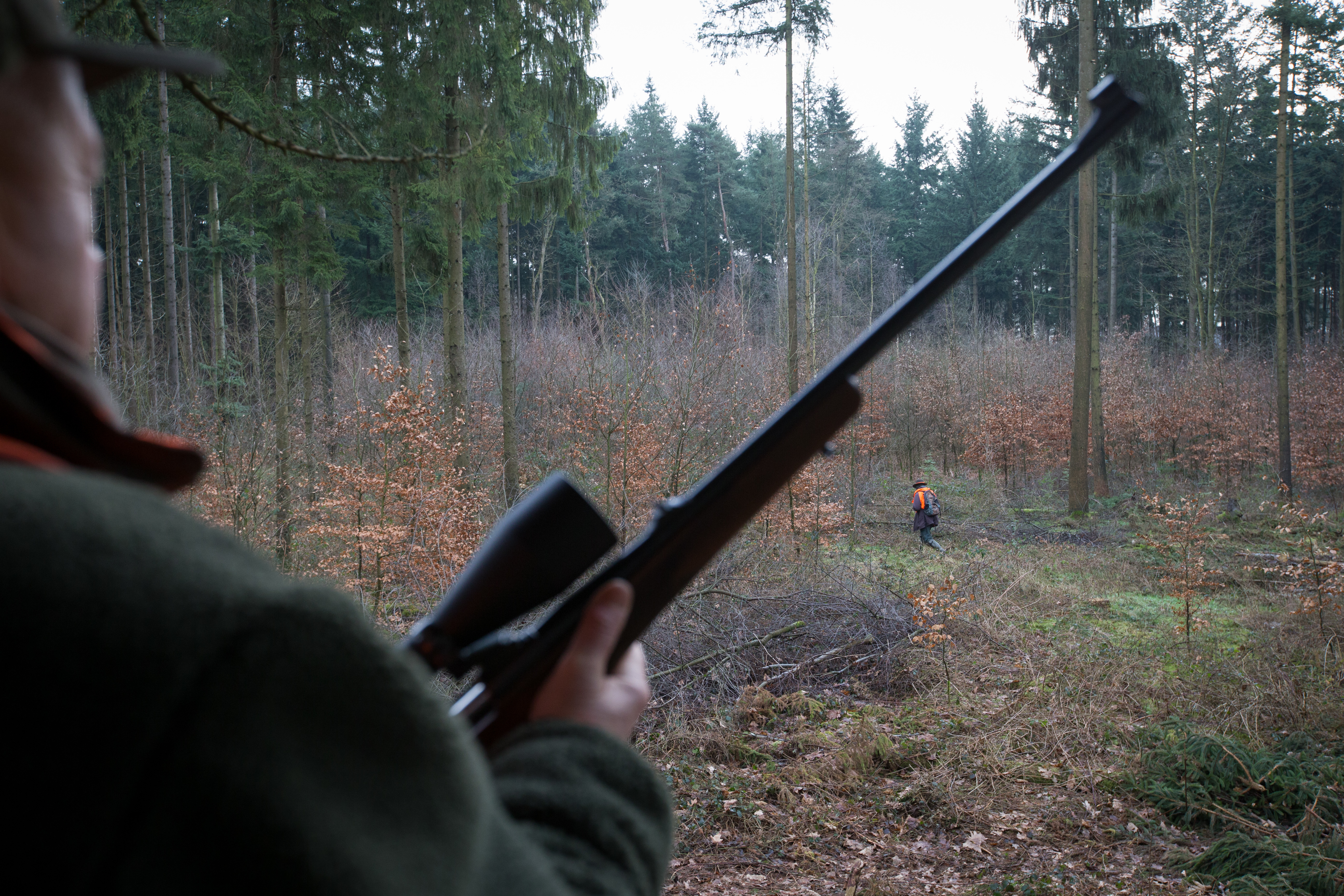 Újra felfegyverzik az erdészeket Romániában