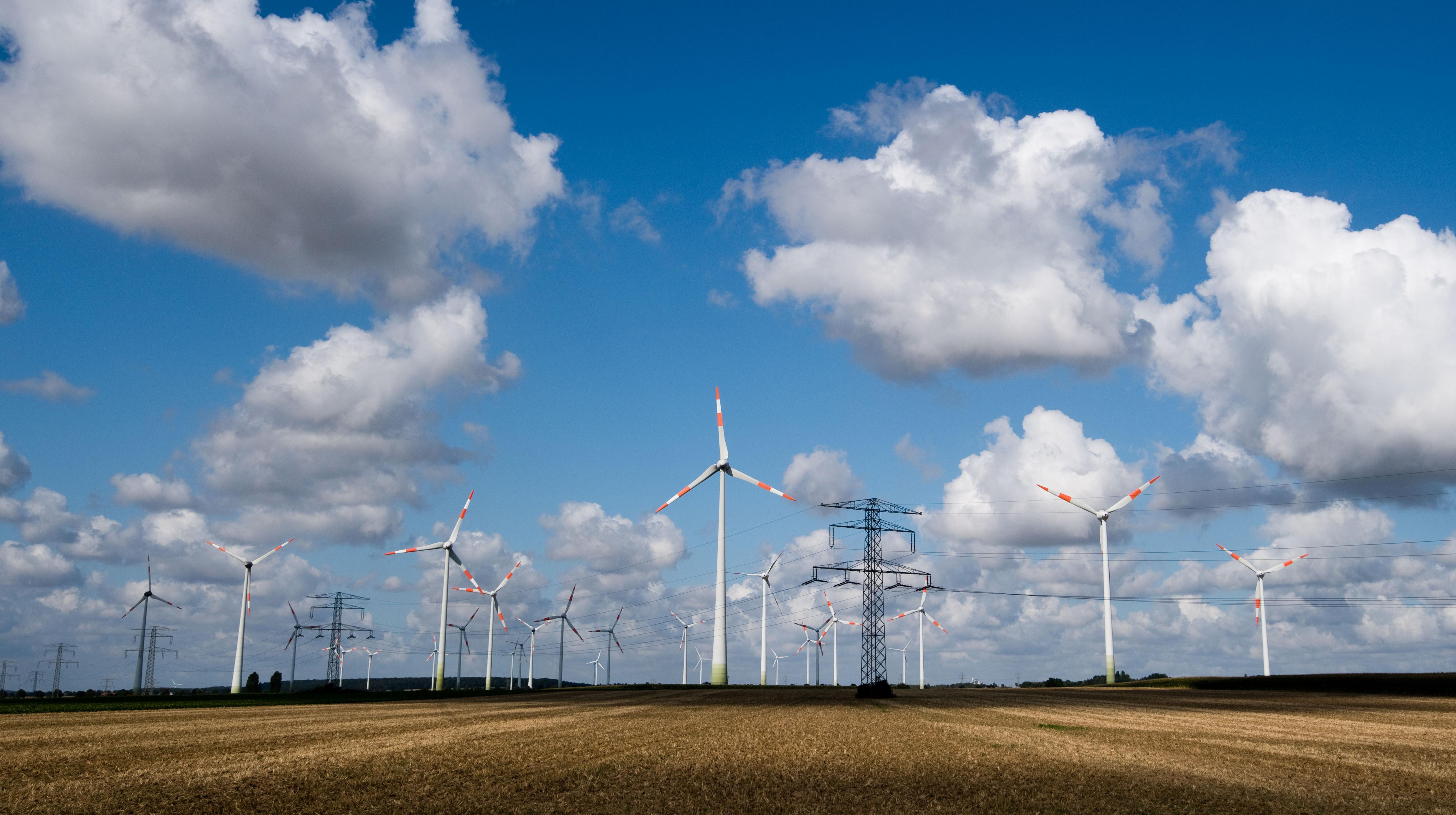 A kormánynak nem voltak saját számításai az energiaárakról, amikor leszavazta a klímasemlegességet