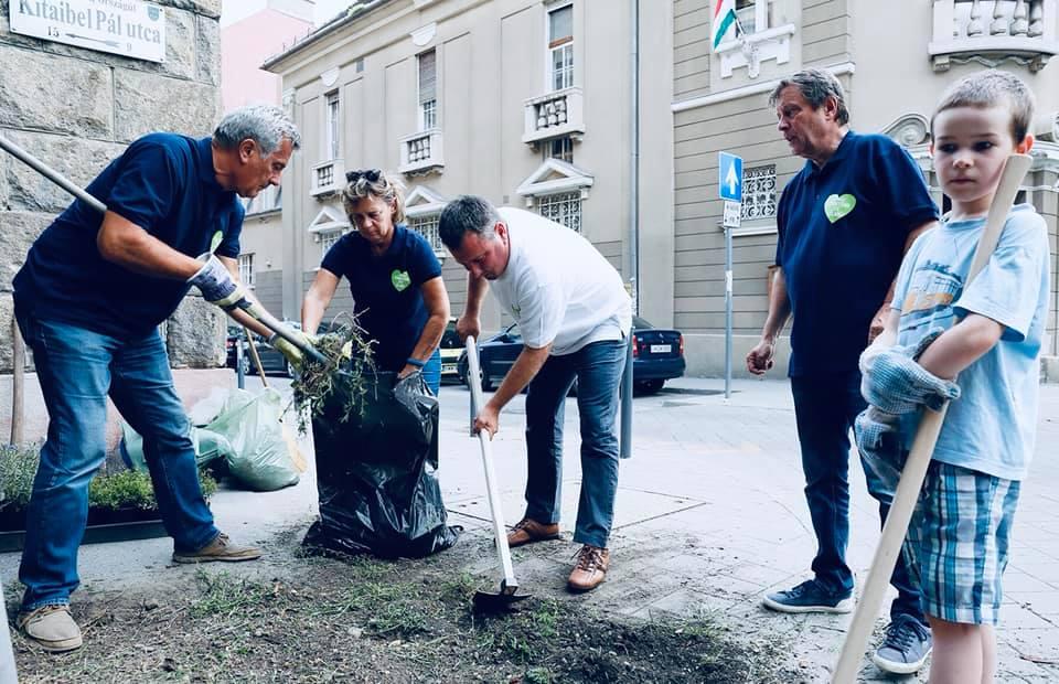 A II. kerület polgármestere gondolt egy nagyot, és örökbe fogadta a Fidesz-iroda előtti virágágyást