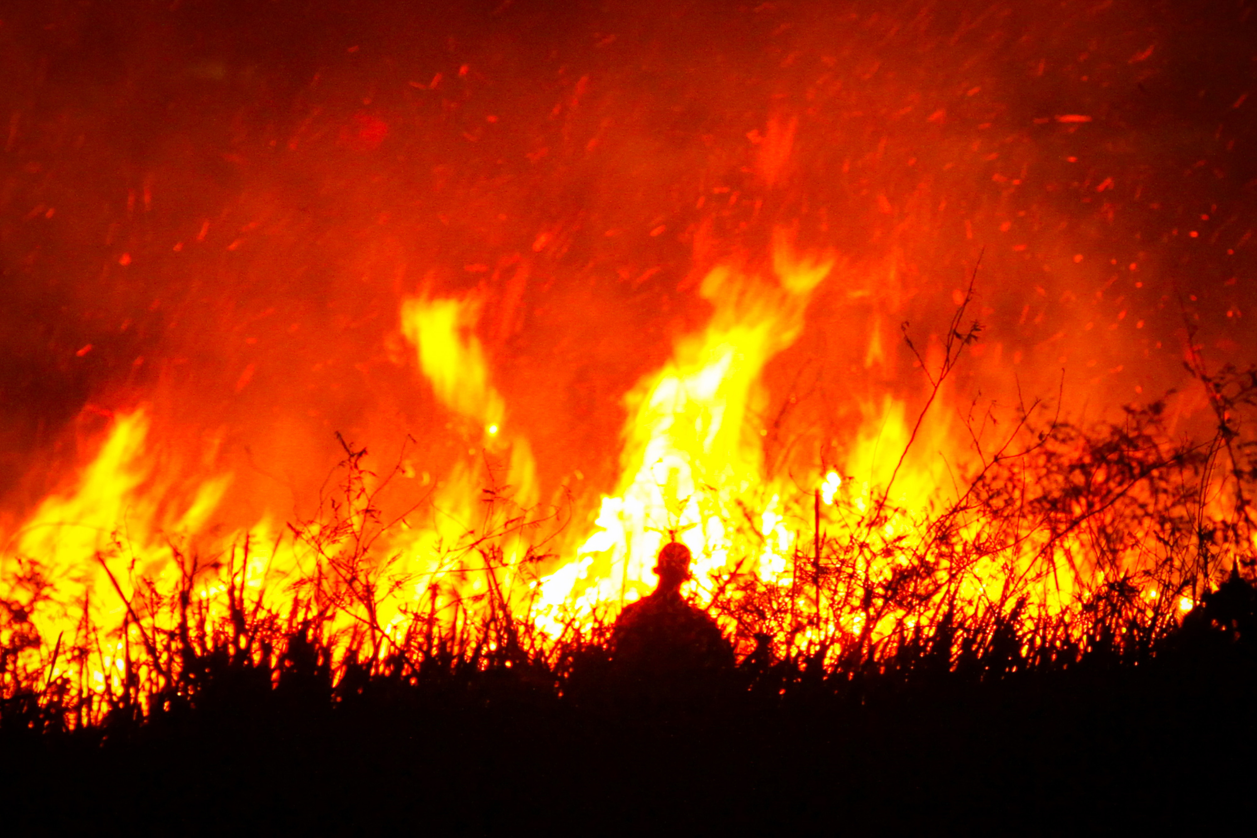 Szumátrán és Borneón is lángolnak az esőerdők