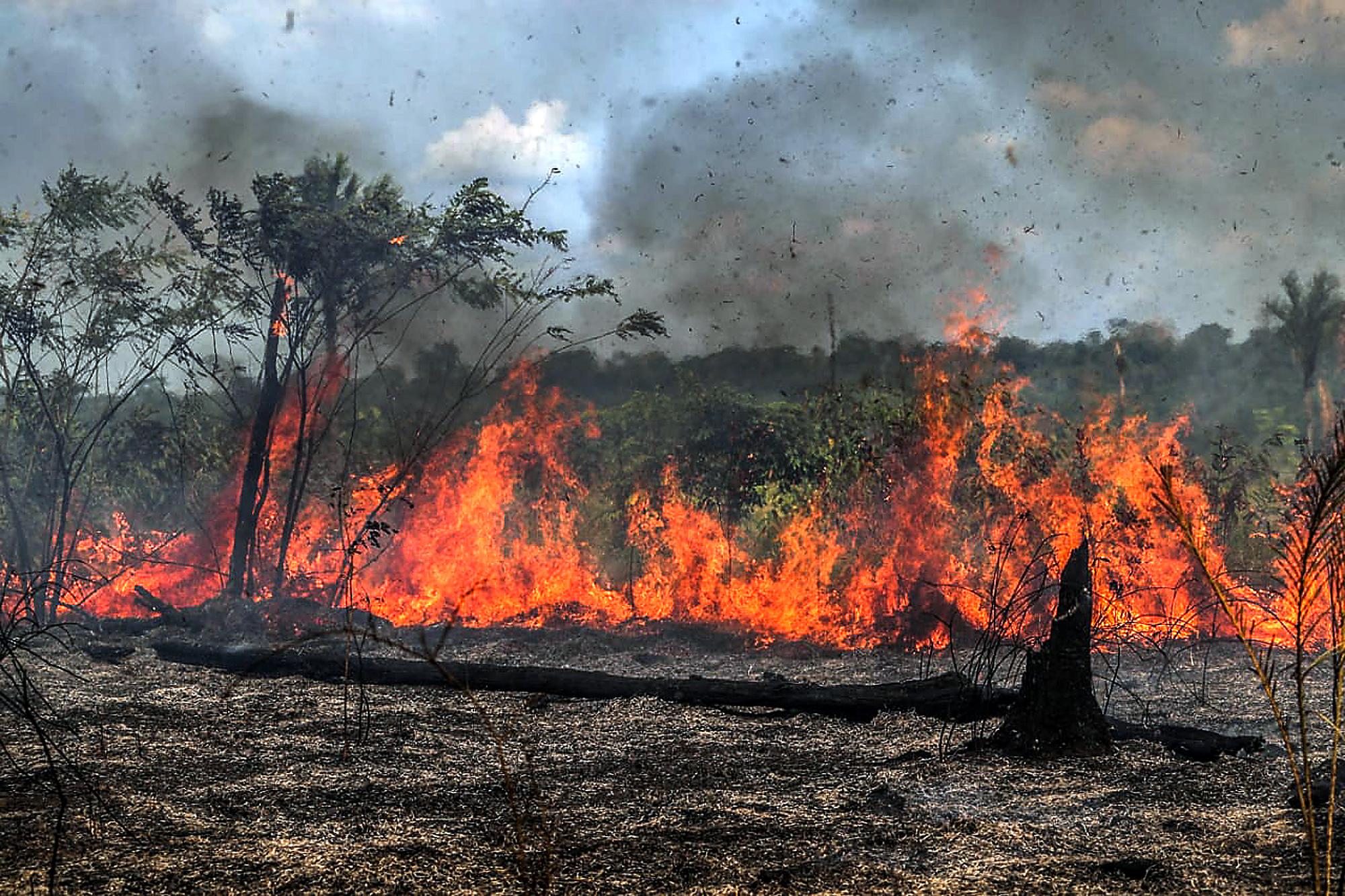 Tűzgyújtási tilalmat rendeltek el Brazíliában