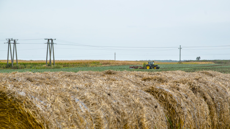 A bíróságon kapta vissza földjét a bábonymegyeri gazda, akitől jogsértően vette el azt a Nemzeti Földalapkezelő Szervezet