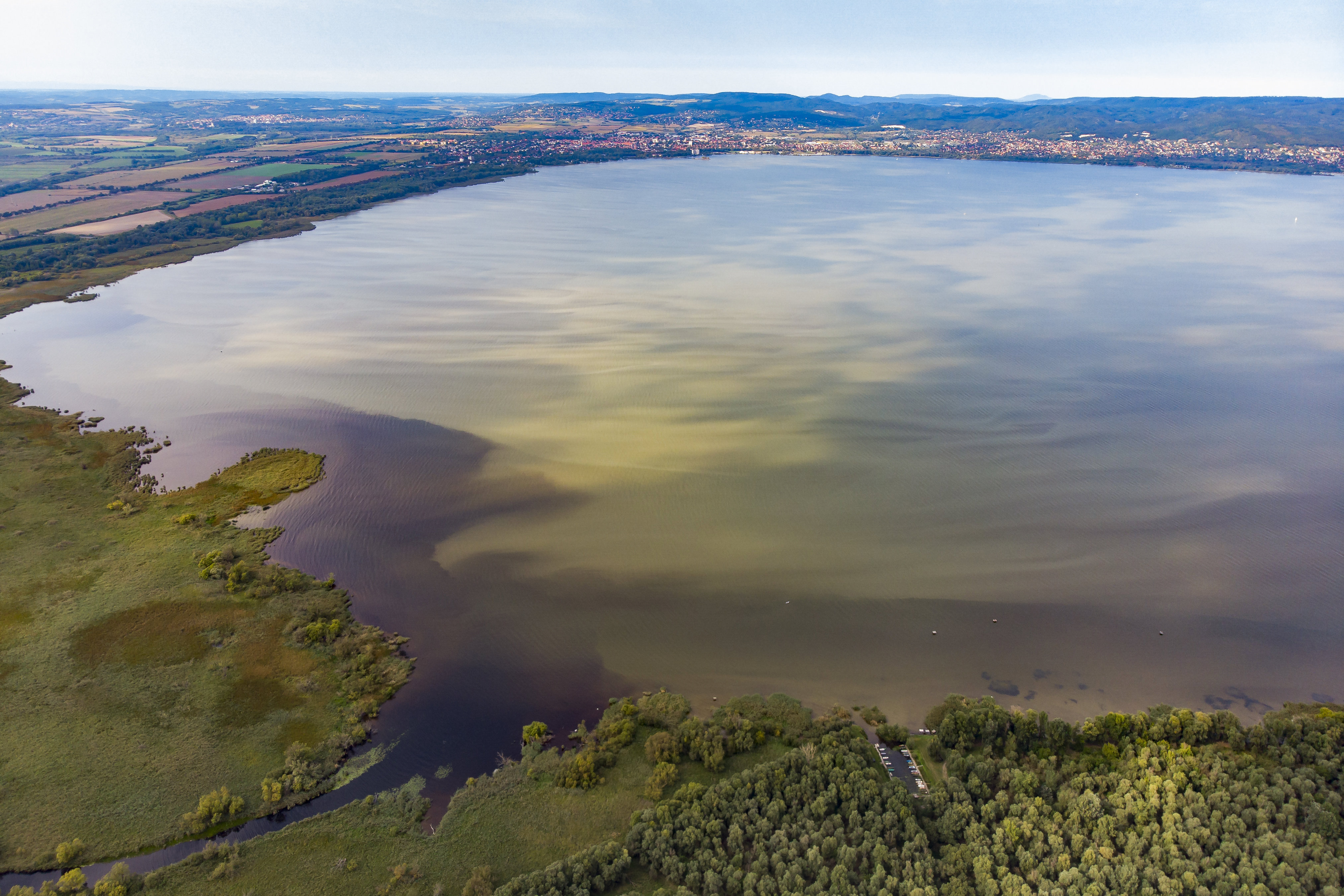 Augusztus végén a Balatonban másfélszer annyi alga volt, mint az 1982-es nagy algásodás csúcsán