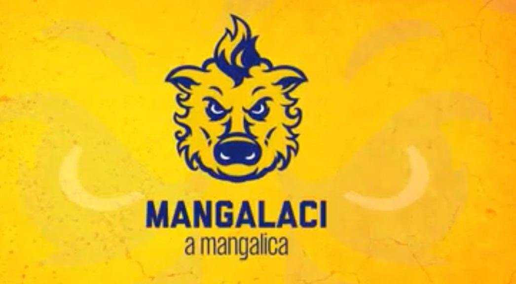 Mégsem Mangalaci lesz a DAC új címerállata, nehogy az ellenfél szurkolói röfögéssel hergeljenek a csapat ellen