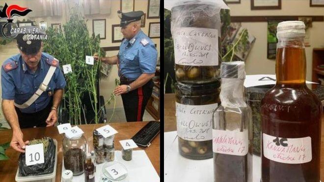 Tele volt fűvel a lakása, letartóztatták az olasz séfet, aki azzal védekezett, hogy új ízekkel kísérletezik