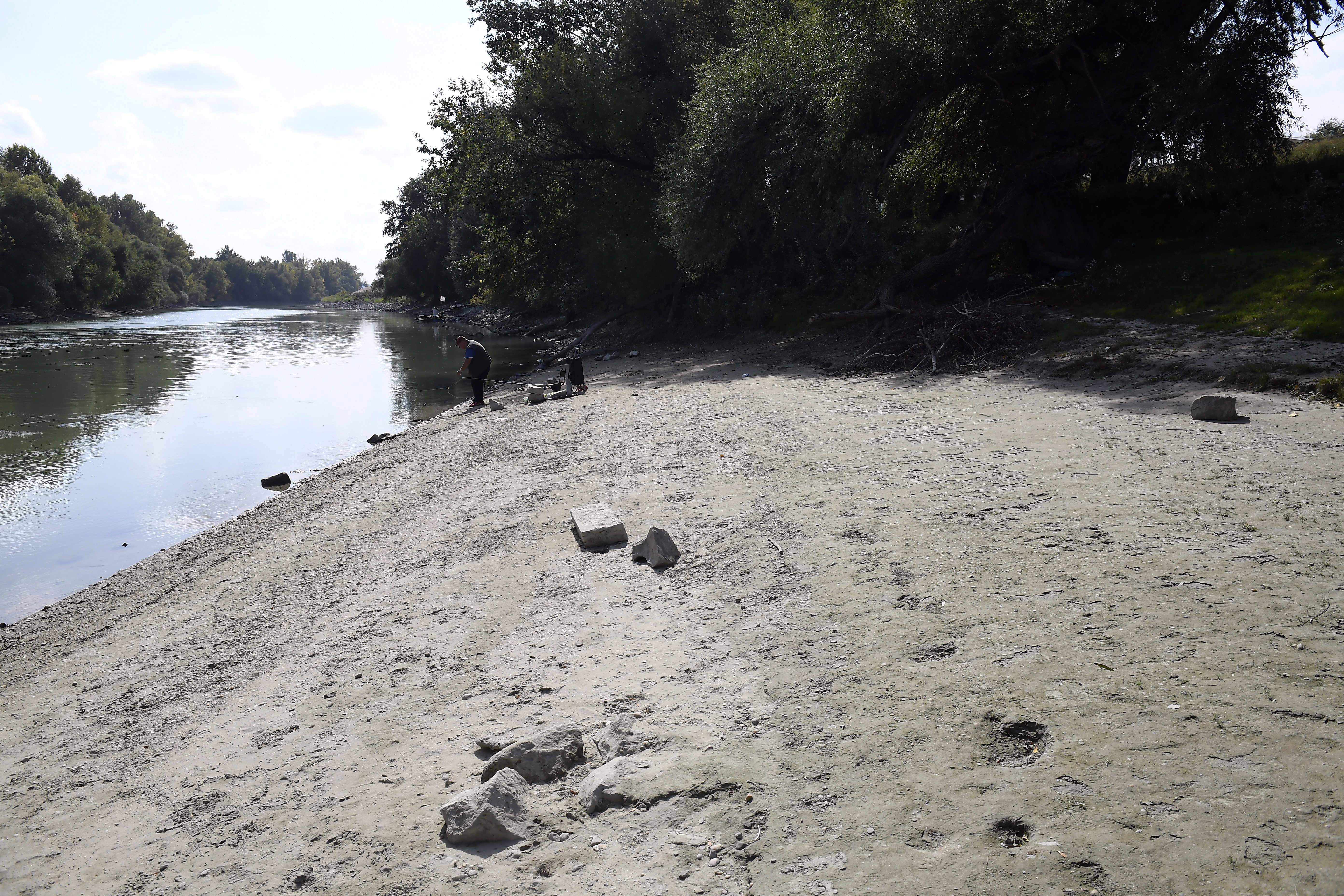 Orvhalászok miatt halhatnak ki a Duna tokhalfajai