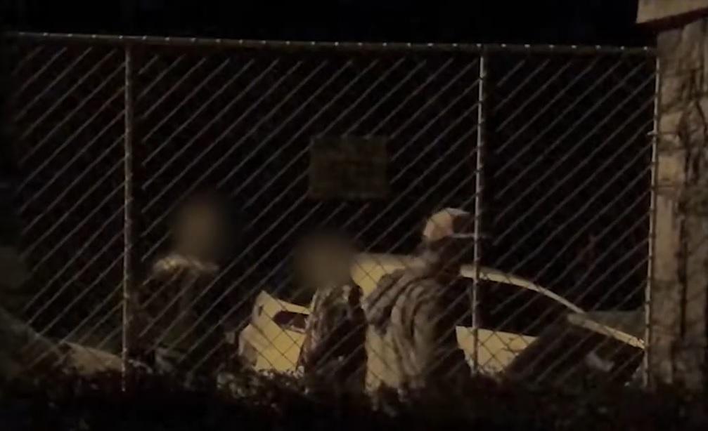 Véletlenül elvesztett negyed kiló füvet, amikor nekiment bringával egy parkoló autónak a Ménesi úton