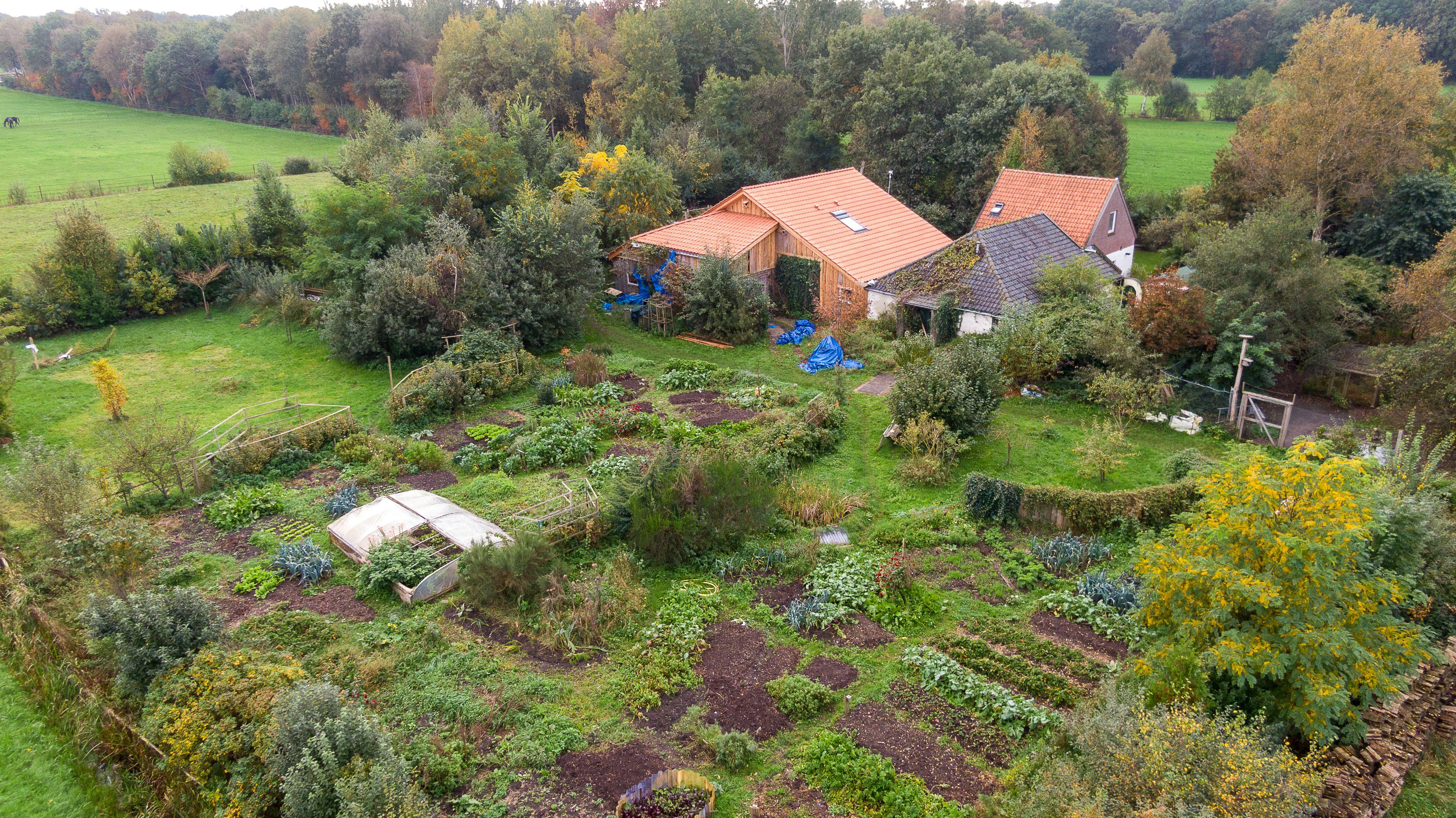 A holland farmon talált fiatalok apját is őrizetbe vette a rendőrség