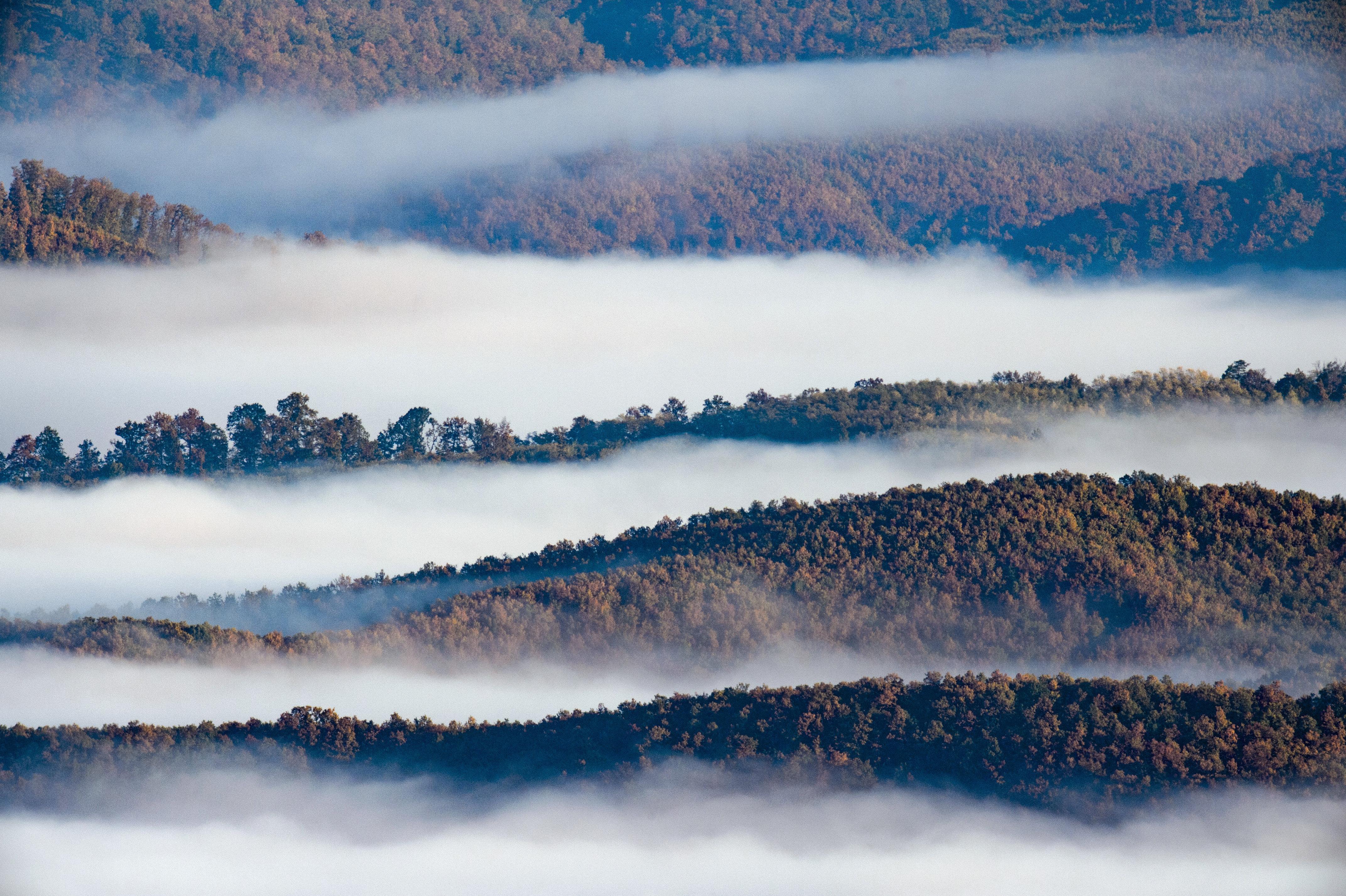 Ismét nagyot alkotott Magyarország elsőszámú ködfotósa, Komka Péter