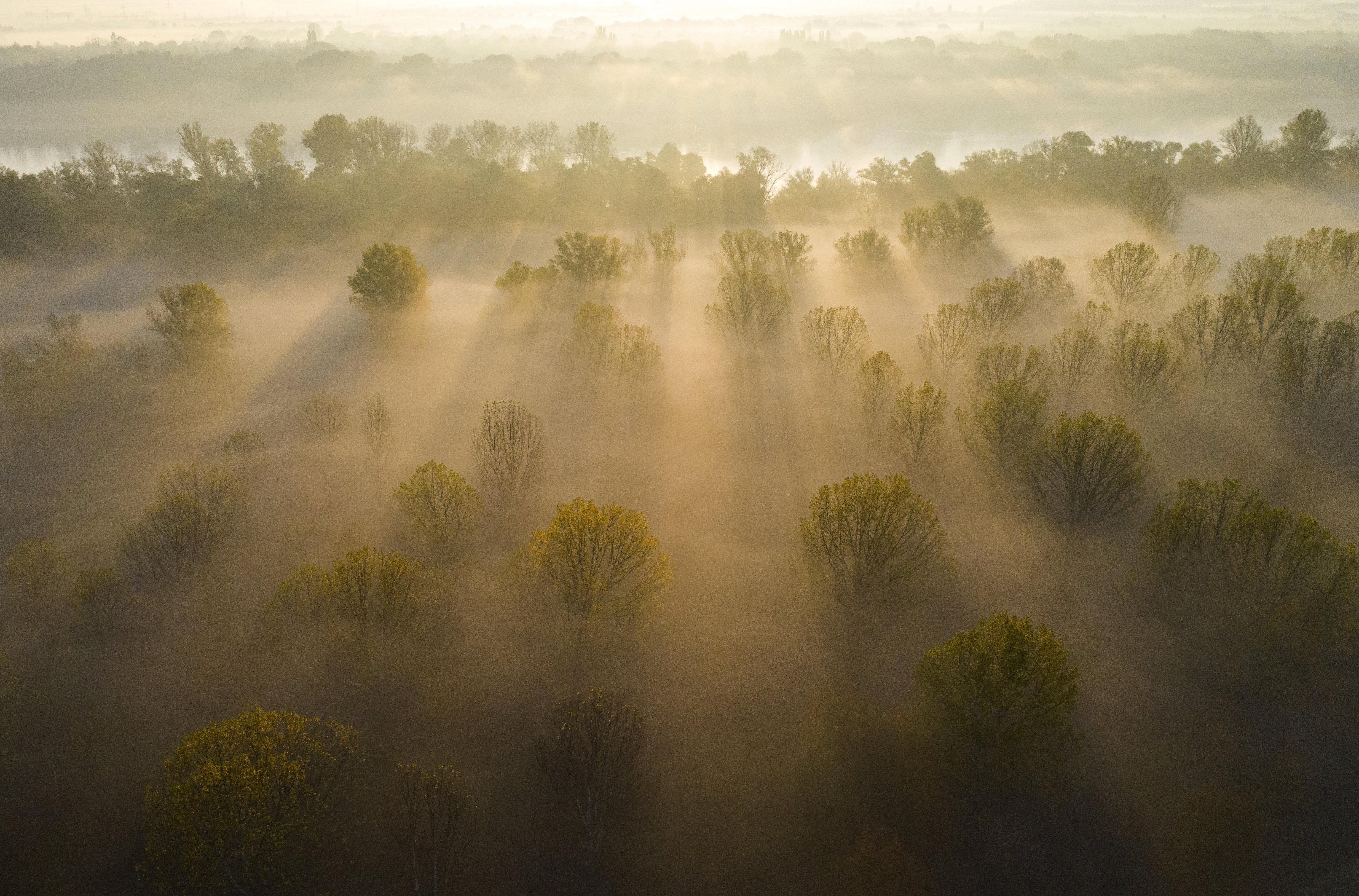 Tartós, sűrű ködre figyelmeztetnek az ország keleti felében