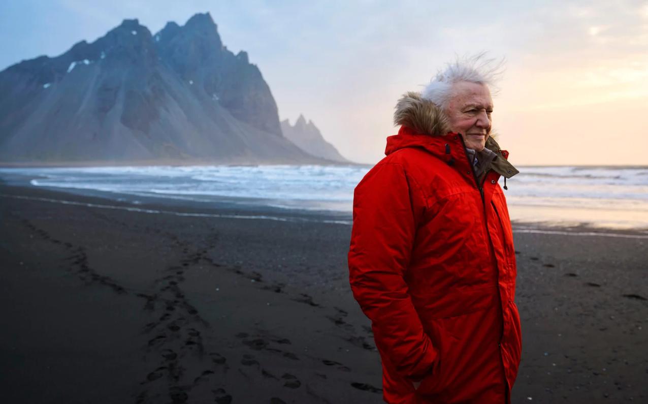 David Attenborough: A válság pillanata eljött, és többé nem késlekedhetünk