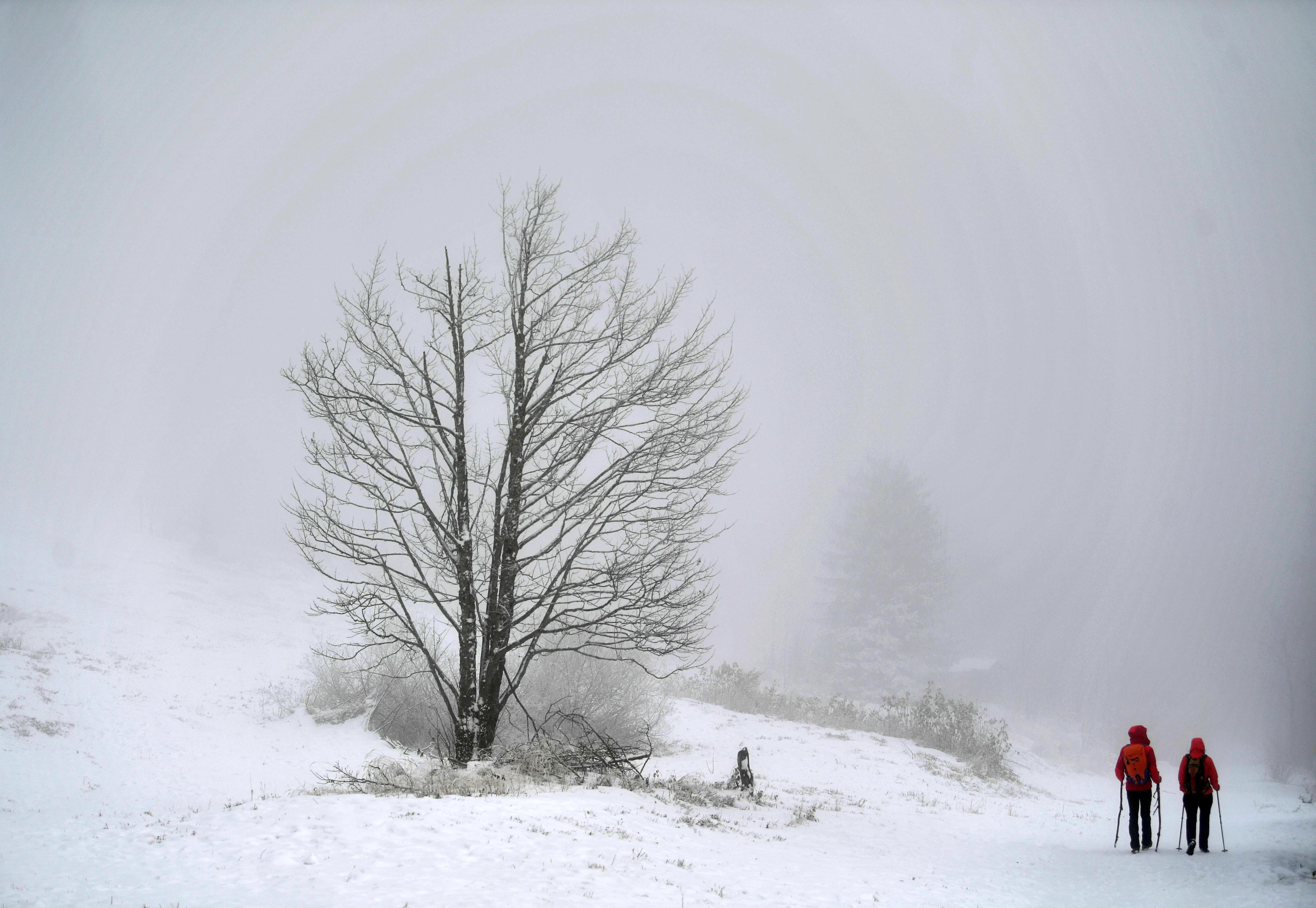 Ausztriában már áramkimaradásokat okozott a havazás