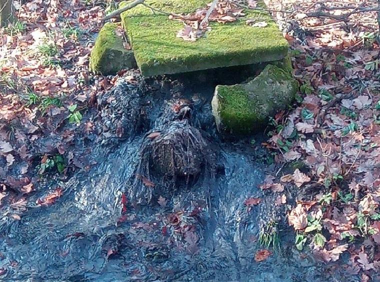 Napokon át ömlött a szennyvíz az erdőbe a mátraházi szanatóriumnál