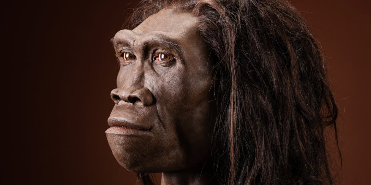 Tovább élhettek a Földön őseink, mint azt eddig gondoltuk