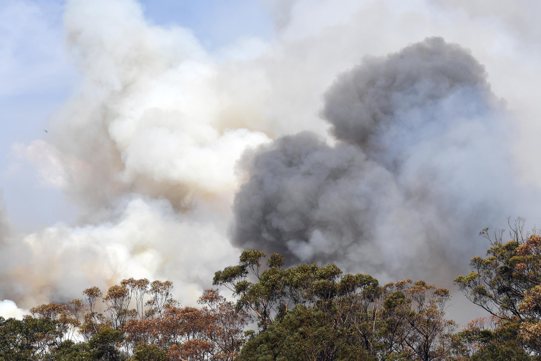 Tovább romolhat a helyzet Ausztráliában: két elszabadult bozóttűz egyetlen gigatűzzé állhat össze