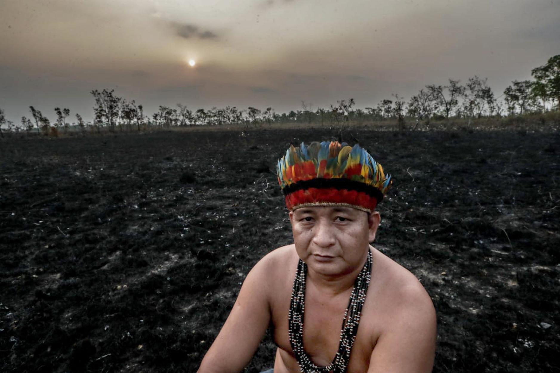 A világ legnagyobb élelmiszeripari cégei is kivehették a részüket az Amazonas irtásából