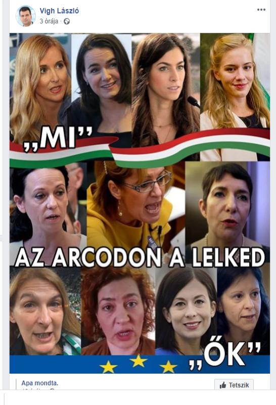 Vigh László országgyűlési képviselő megosztott egy Facebook-posztot arról, hogy az ellenzéki képviselőnők rondábbak, mint a fideszesek
