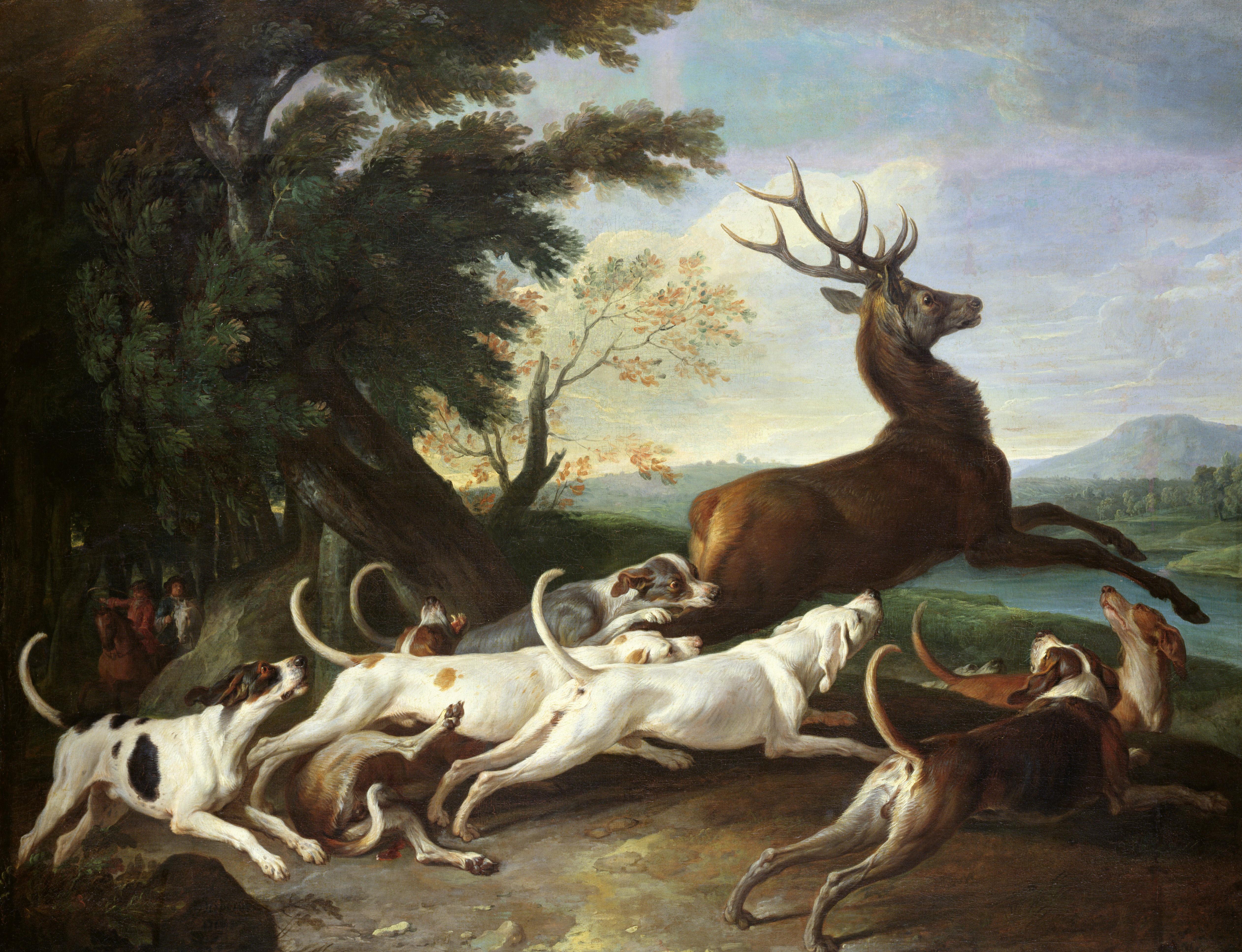 A vadász lelőtt három agarat, az üldözött őz és az orvvadászok elmenekültek