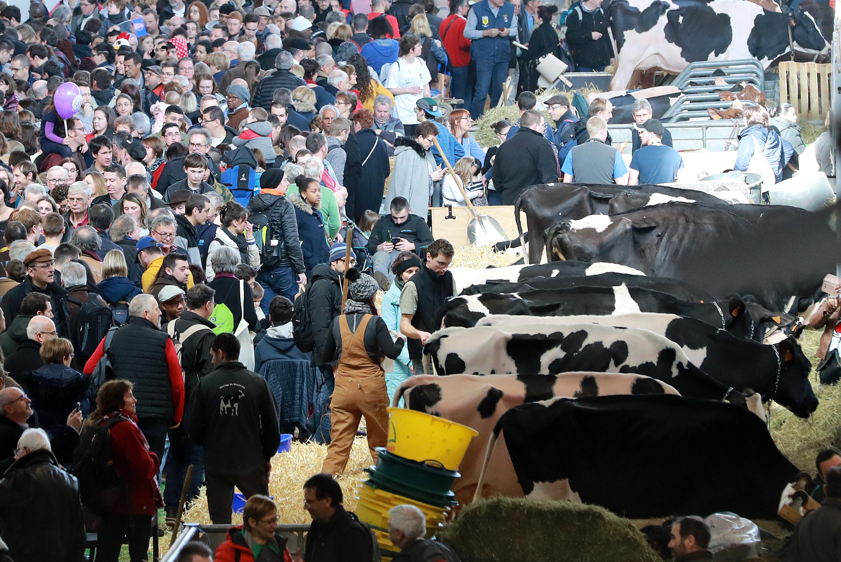 A franciák betiltják az ötezer embernél több embert megmozgató zárttéri rendezvényeket