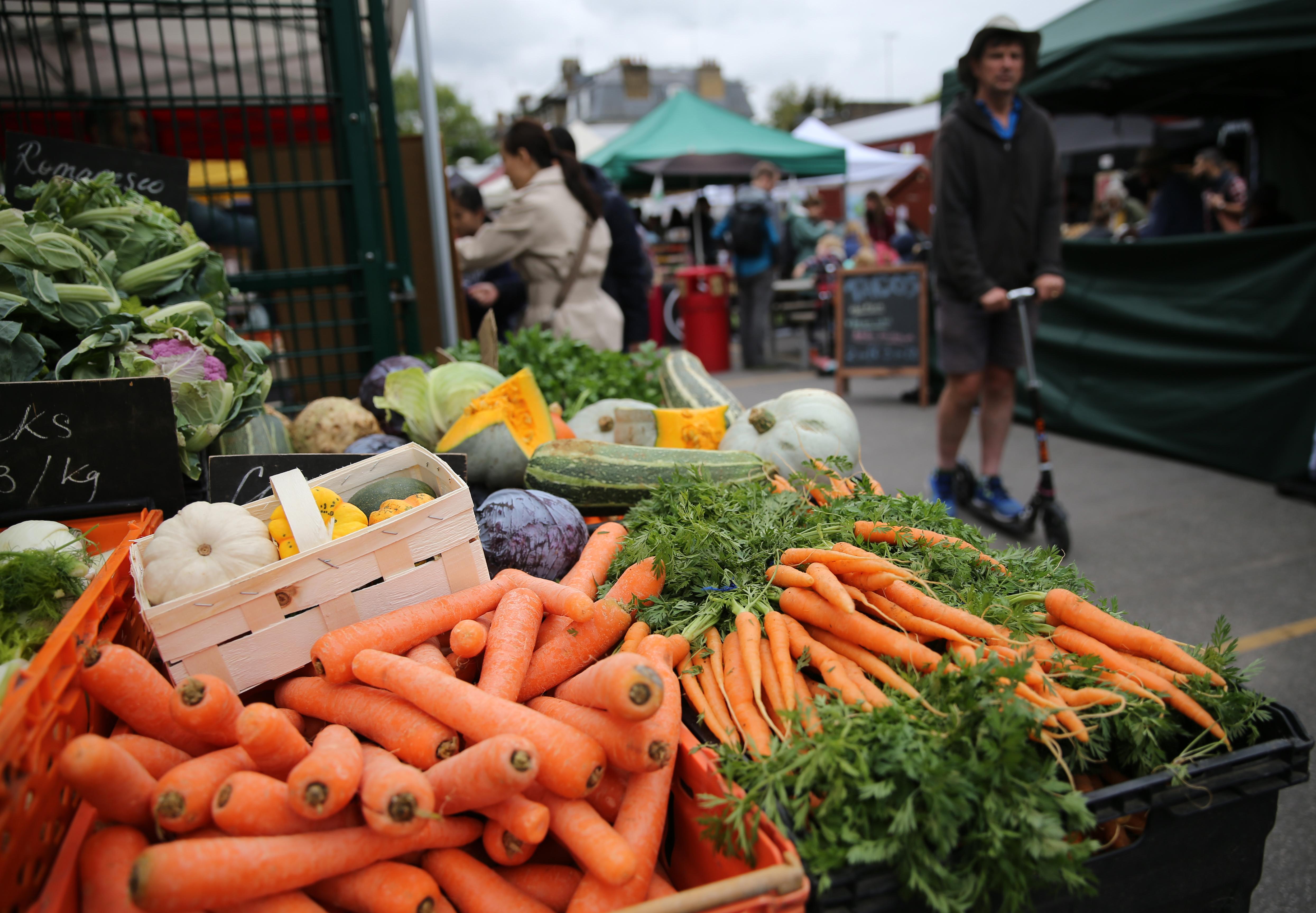 A FAO szerint jelentősen csökkentek a világpiaci élelmiszerárak márciusban