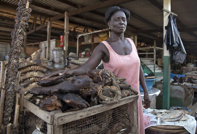 Az ENSZ egyik vezetője világszerte betiltaná a vadállatpiacokat