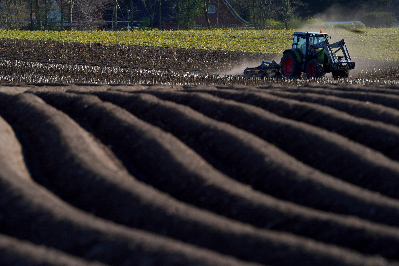 Felmentést kérhetnek a házi karantén alól a mezőgazdaságban dolgozók