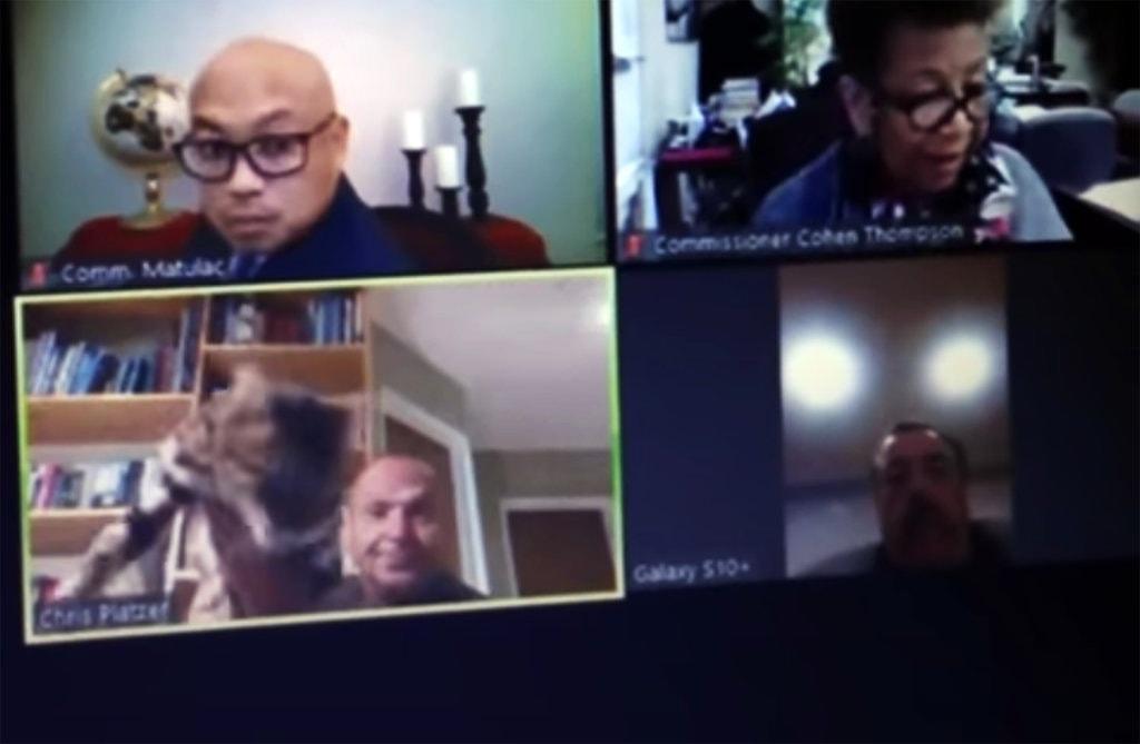Lemondott a kaliforniai tisztviselő, miután egy online tanácskozáson eldobta a macskáját