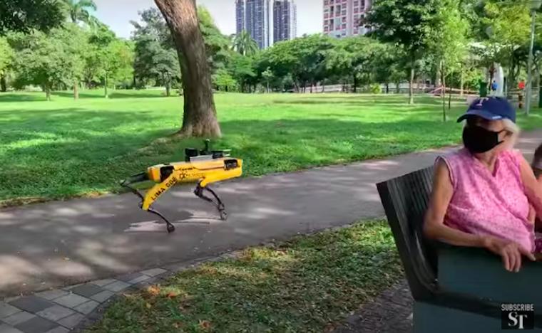 A Boston Dynamics híres robotkutyája járőröz a szingapúri parkokban és figyelmezteti az embereket a távolság betartására