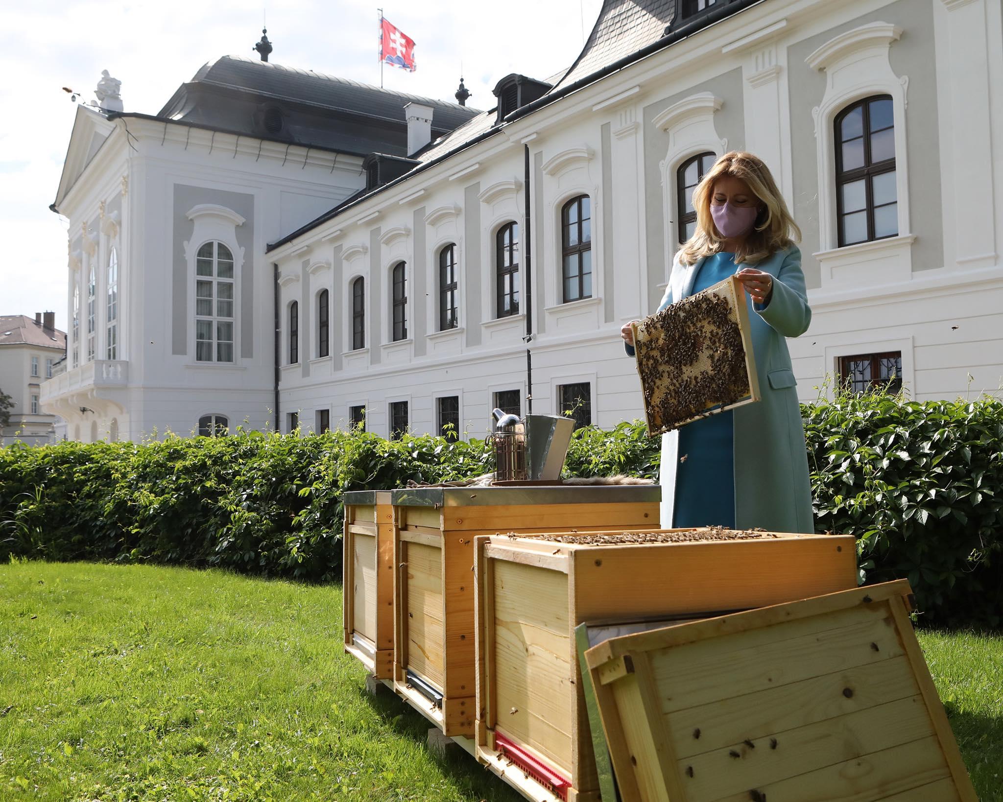 Méhkaptárakat telepítenek a szlovák elnöki palota kertjébe