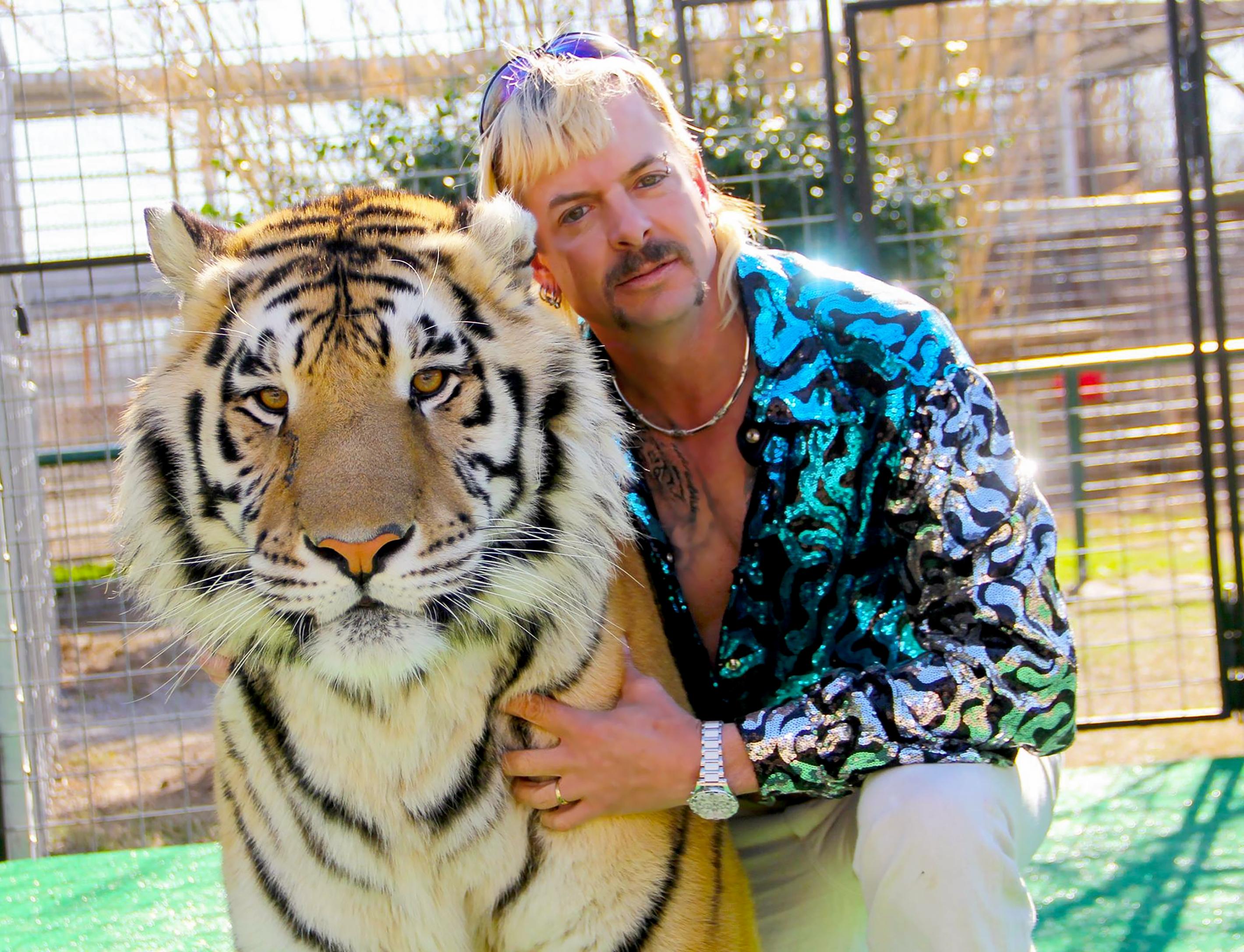 Élete ellenségéhez kerül az elítélt amerikai tigriskirály állatkertje
