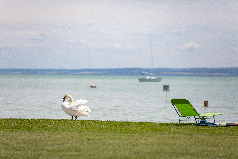 A természetes tavakról, köztük a Balatonról kezdeményez népszavazást az MSZP