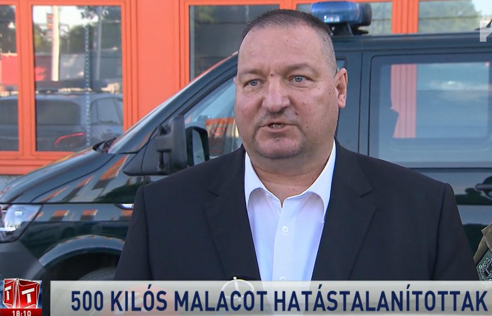 Malacpánik a Ferencvárosban, avagy a bombahír megfelelő tálalása