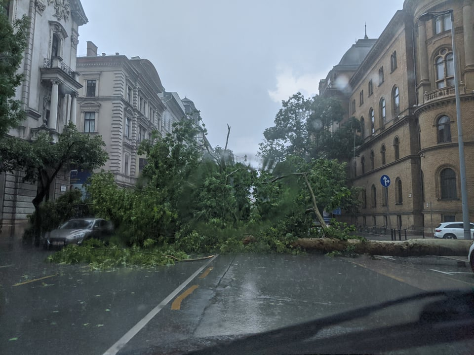 Mogyorónyi jégdarabok, kidőlt fák: Budapestre szakadt az ég
