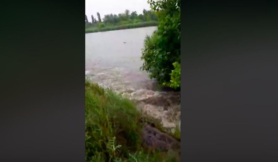 Pelenkák, betétek, tamponok és ürülék: így folyt a szennyvíz a tízezrek által lakott Ráckevei Dunába a vasárnapi zápor után