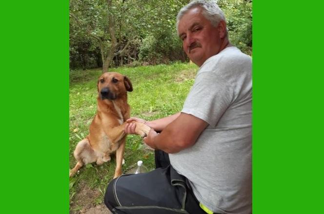 Eltűnt Mihalicz János és a kutyája