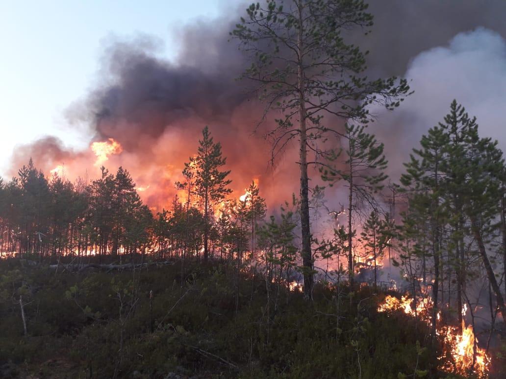 A jakutföldi erdőtüzek rekord sok szén-dioxid-kibocsátást eredményeztek
