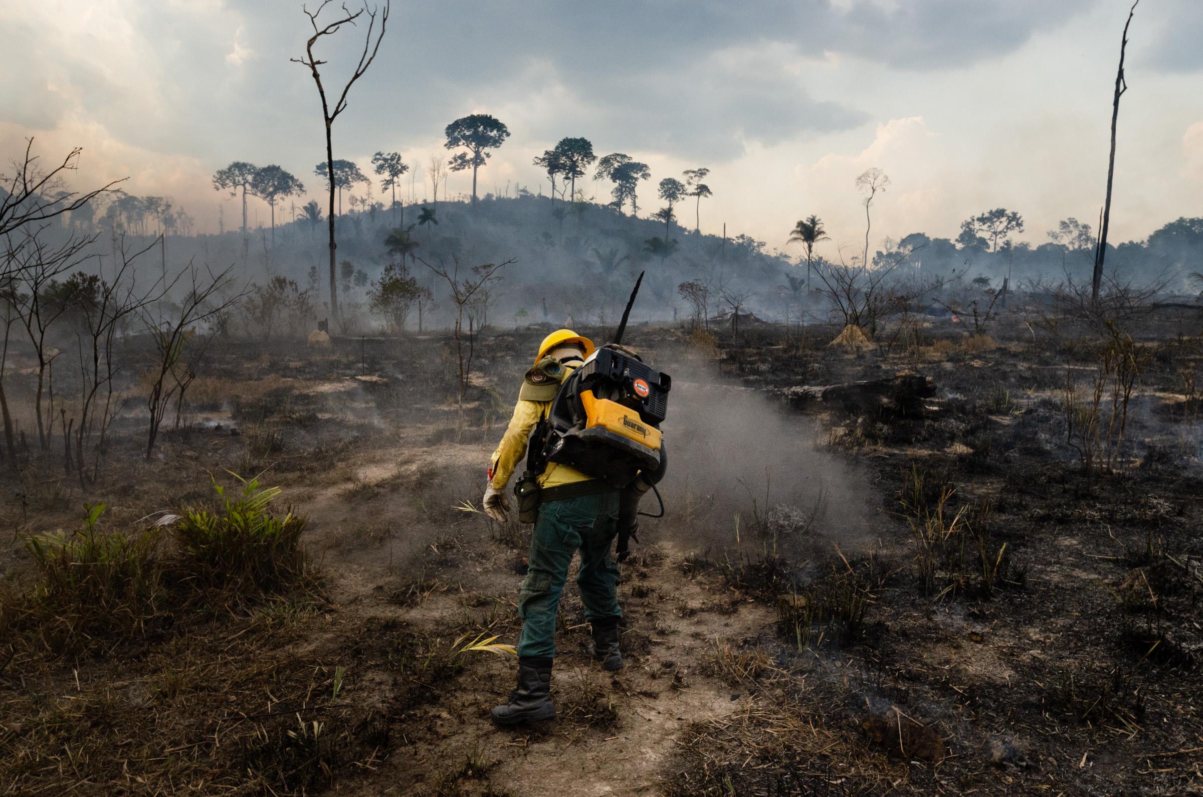 6803 helyen lángolt júliusban a brazíliai esőerdő