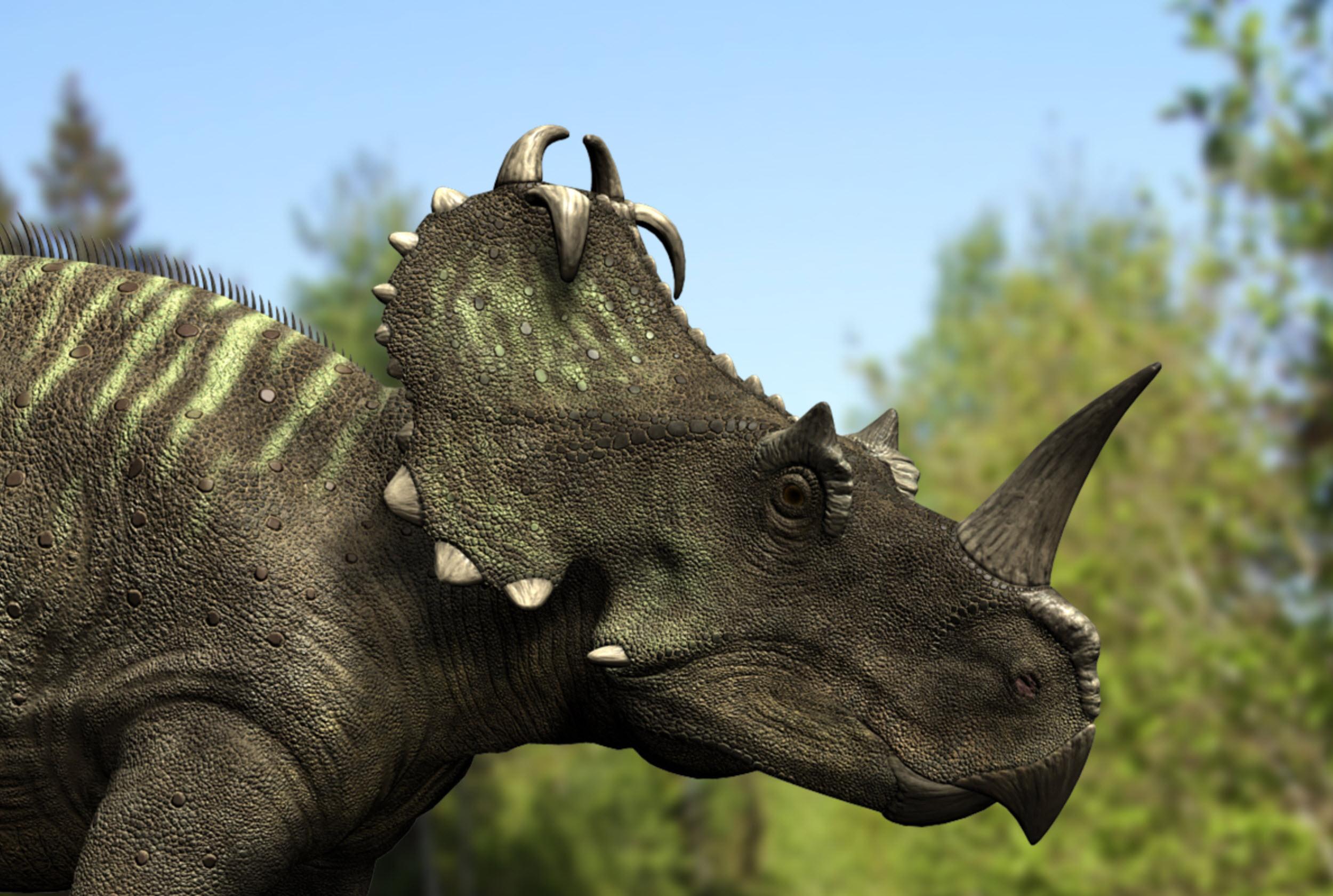 Csontrákos volt egy dinoszaurusz