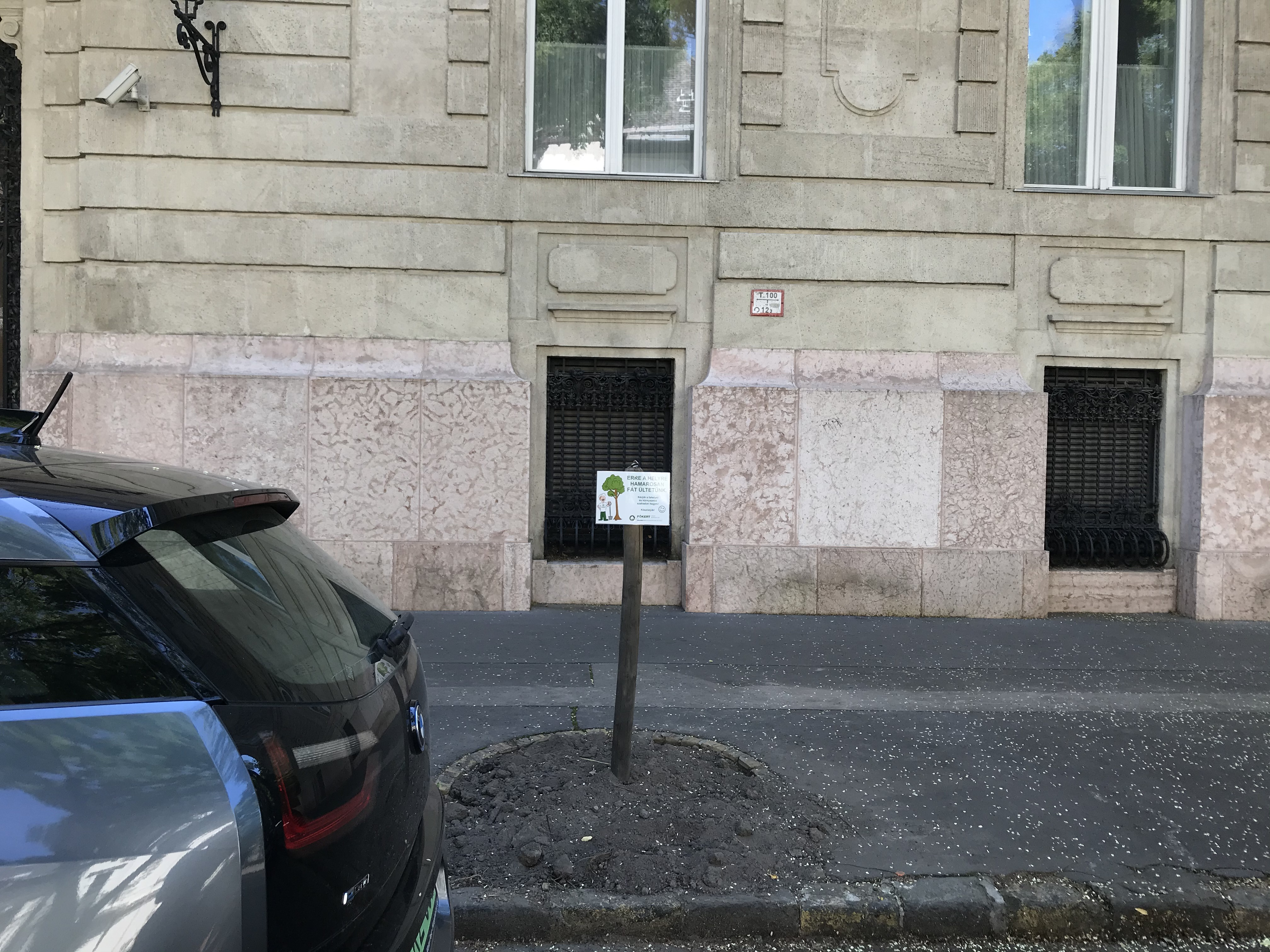 Kivágtak 28 fát a híres Benczúr utcai fasorból, a lakók petíciót indítottak, a főkertész szerint veszélyes volt a helyzet