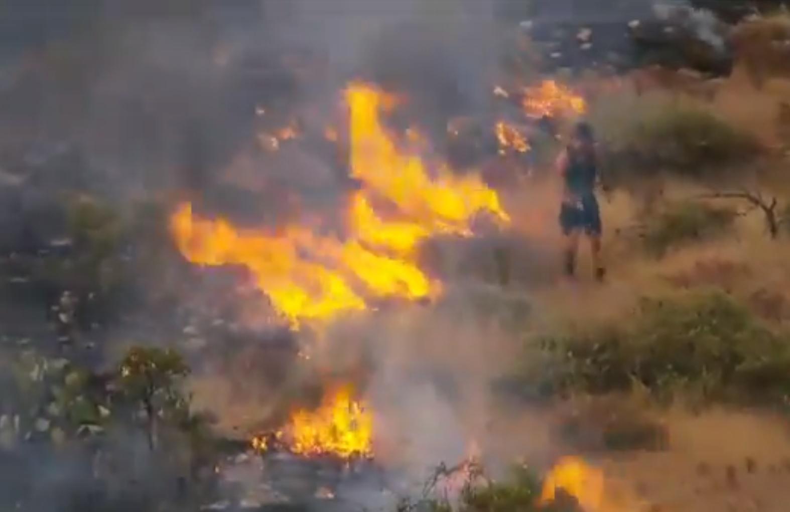 Tornacipőben rugdosódva próbálta megfékezni a tüzet egy kocogó férfi Phoenixnél