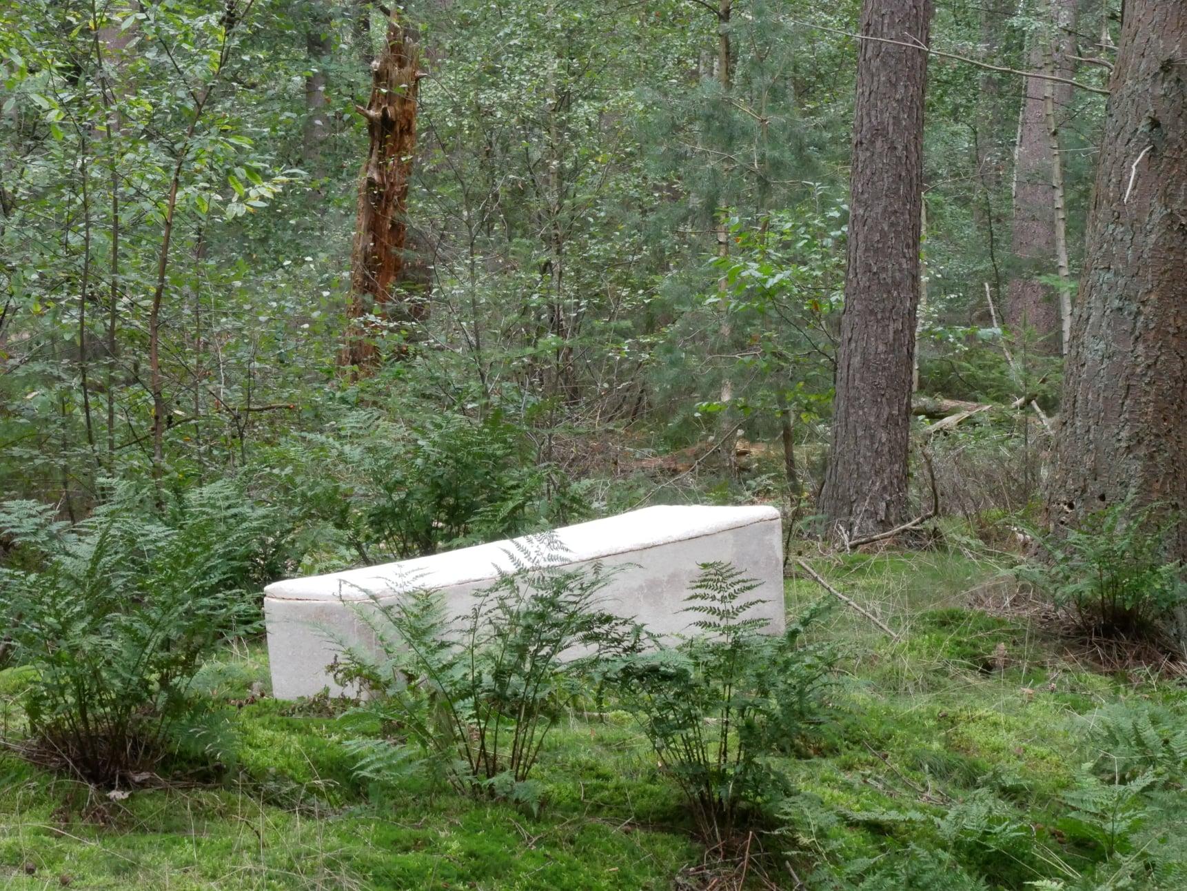 A világon először gombakoporsóba temettek egy embert Hollandiában