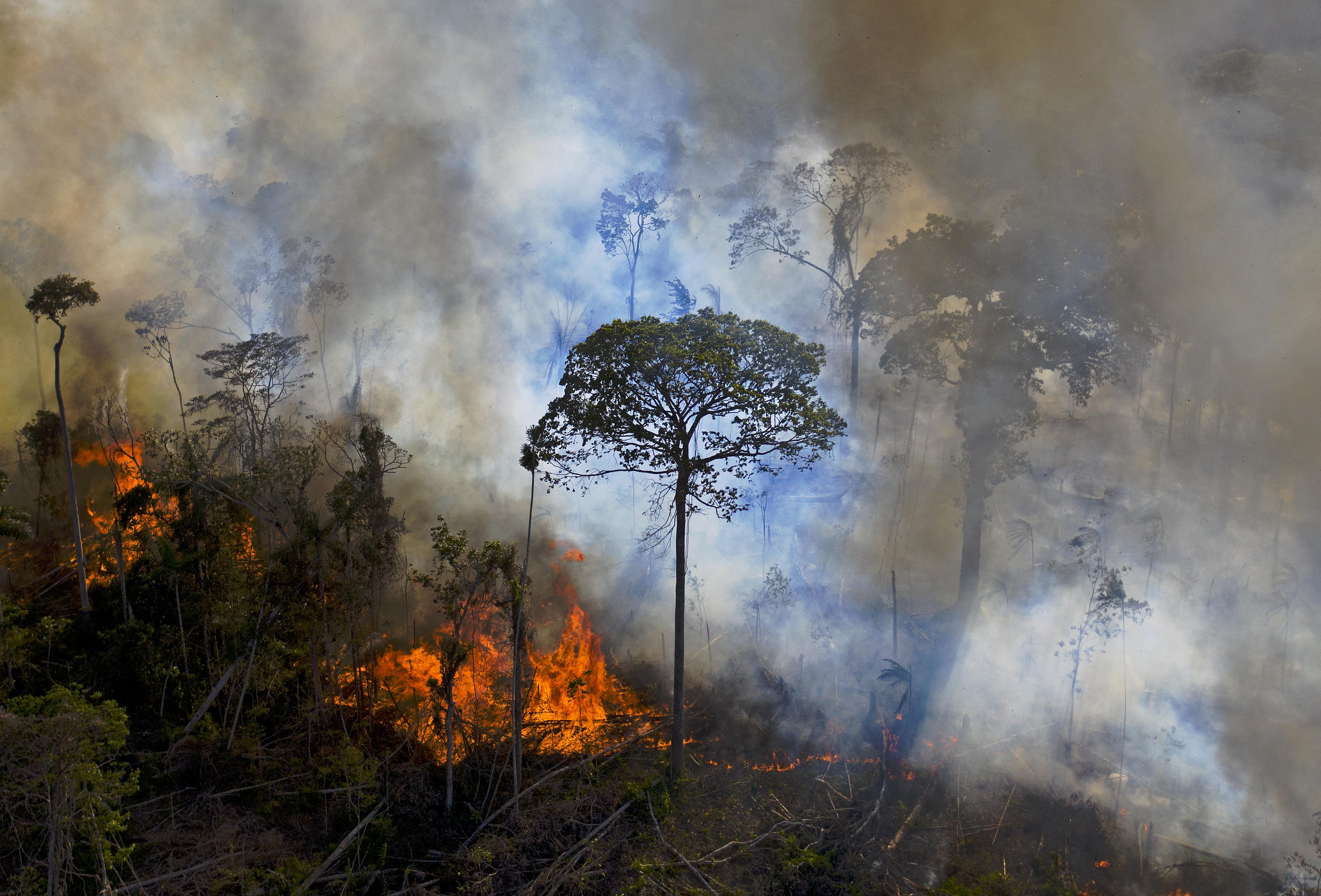Tovább nő az amazonasi tüzek száma, Bolsonaro tagad és hárítja a felelősséget