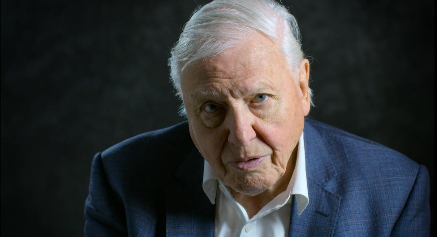 Attenborough: Nem romba döntöttük, hanem elpusztítottuk a világunkat
