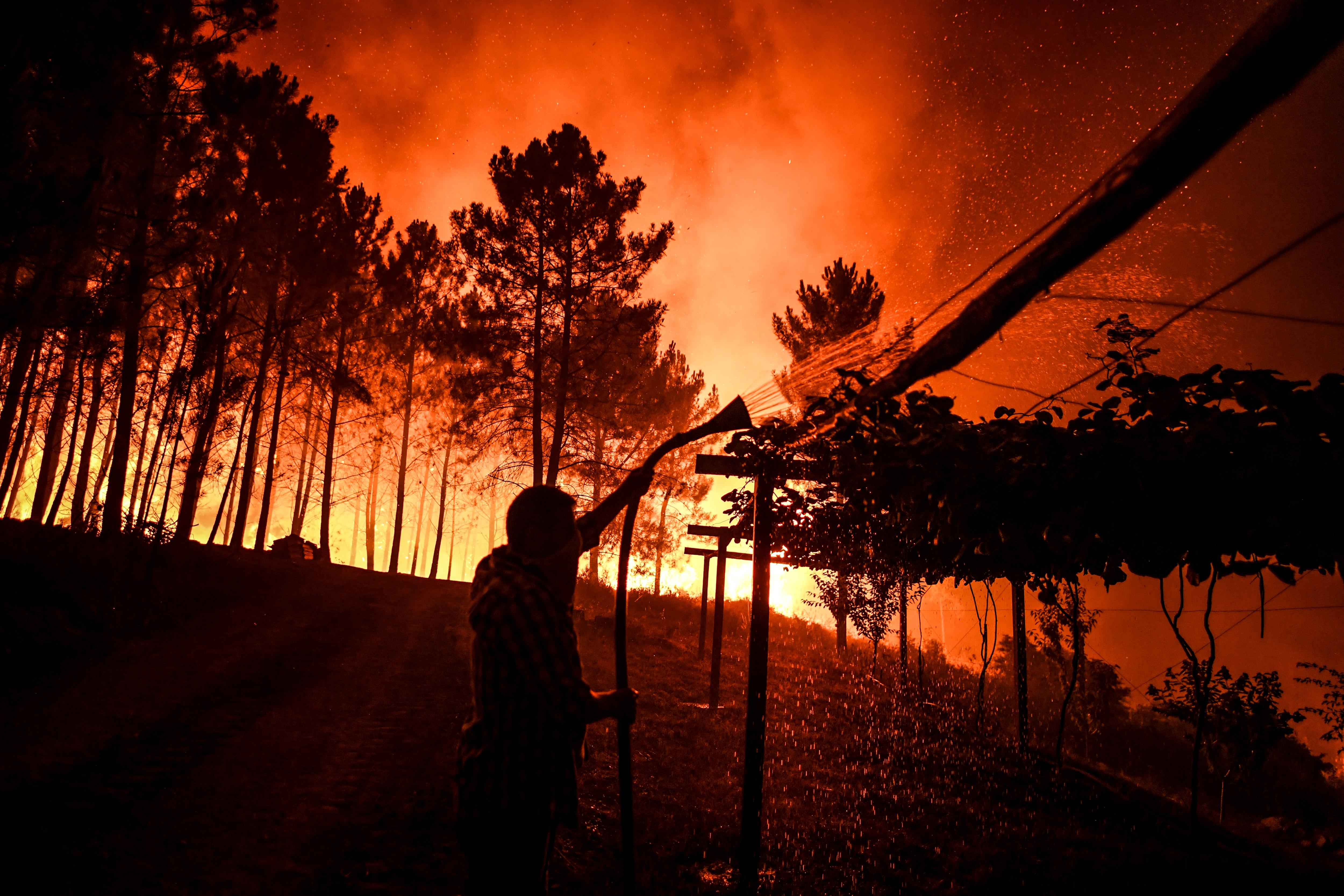 Csak tavaly 400 ezer hektárnyi erdő égett le Európában