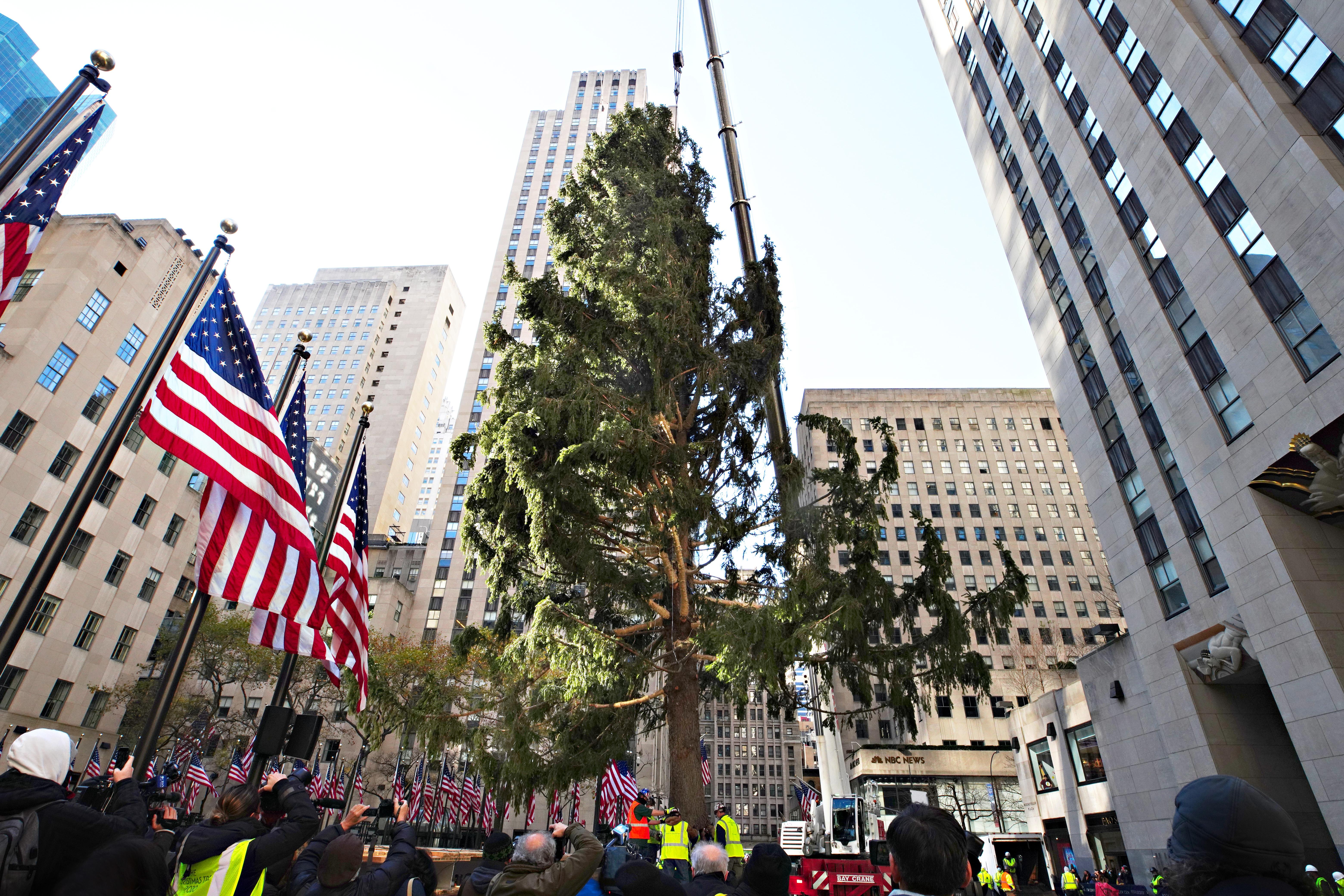 A New York-i Rockefeller Centernél állított karácsonyfa állapota tökéletesen leírja egész 2020-at